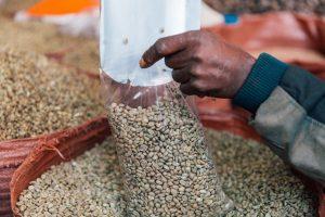 Nachhaltige Biofolien sind meistens Einwegprodukte